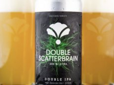 Bearded Iris Double Scatterbrain 2019 can 473ml